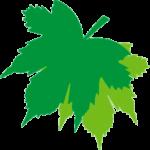 Logotipo Hotel San Fernando